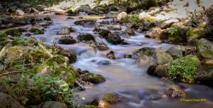 The creek in Sila